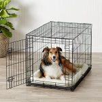 AmazonBasics Cage pliante en métal avec 1porte pour chien TailleL de la marque AmazonBasics image 1 produit
