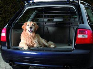 Barrière de sécurité pour chien pour coffre de voiture ; comment trouver les meilleurs modèles TOP 0 image 0 produit