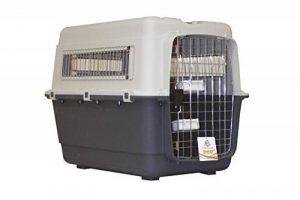 Cage pour chien avion : faire des affaires TOP 6 image 0 produit