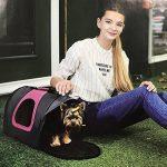 Caisse de transport pour grand chat - comment trouver les meilleurs produits TOP 11 image 5 produit