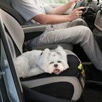 Couvre-siège et protection pour siège auto par Sidekick - Protégez la tapisserie de votre voiture des sièges pour enfants, des chiens, des enfants en été comme en hiver. de la marque Sidekick image 3 produit