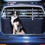 Grille pare chien voiture : votre top 5 TOP 1 image 6 produit