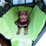 Housse de protection voiture chien : faire le bon choix TOP 9 image 6 produit
