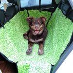 Housse de voiture pour chien transport protection siège ; faire des affaires TOP 1 image 6 produit