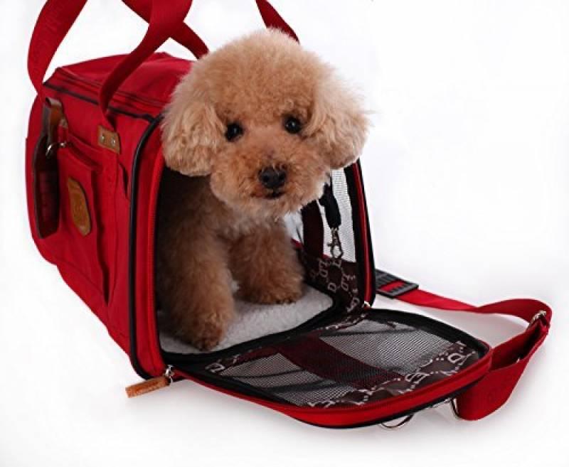 panier velo pour petit chien comment trouver les. Black Bedroom Furniture Sets. Home Design Ideas