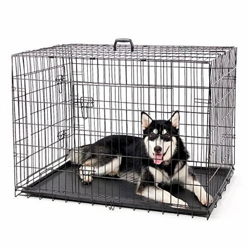 voiture grand coffre pour chien pour 2019 comment choisir les meilleurs en france. Black Bedroom Furniture Sets. Home Design Ideas