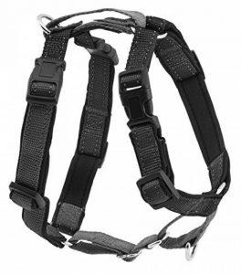 PetSafe - Harnais 3-en-1 pour Chien Rembourré Noir - Ceinture de Sécurité pour utilisation en Voiture, Harnais Standard Résistant et Anti-Traction pour Chien - Taille L de la marque PetSafe image 0 produit