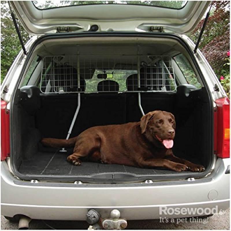 grille chien voiture   comment trouver les meilleurs en