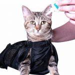 Sac de transport pour grand chat - faites une affaire TOP 12 image 3 produit