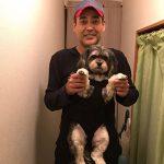 Sac ventral pour chien 10 kg : faites une affaire TOP 2 image 5 produit