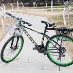 Vélo avec panier pour chien - comment acheter les meilleurs produits TOP 8 image 2 produit