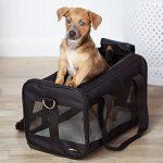AmazonBasics Sac de transport à parois souples pour animal de compagnie Noir TailleM de la marque AmazonBasics image 1 produit
