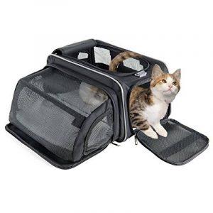 Cage ou sac de transport pour chat : top 8 TOP 1 image 0 produit
