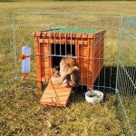 Cage pour chien - faites une affaire TOP 8 image 2 produit
