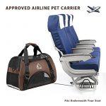 Caisse de voyage avion pour chien : faites des affaires TOP 0 image 3 produit
