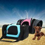 Caisse de voyage avion pour chien : faites des affaires TOP 3 image 6 produit