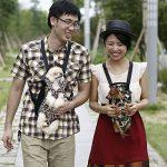 Contever® Taille S ( 0-2.5kg ) Sac de transport Ventral Poitrine en Toile Rayé Sac à dos pour Animal Chien Chat Chiot --Style 2 de la marque Contever image 1 produit