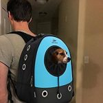 Okbuynow Sac à dos tout Confort pour chiens et chats jusqu'à 15kilos, pour aller faire une promenade, randonnée pédestre et cyclisme (bleu) de la marque OKBUYNOW image 4 produit