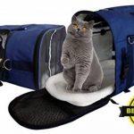 Sac à dos de transport pour chat : comment trouver les meilleurs modèles TOP 12 image 1 produit