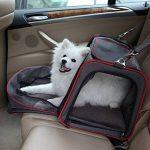 Sac à dos pour chien de 7 kg : acheter les meilleurs modèles TOP 3 image 6 produit