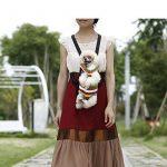 Sac à dos pour chien de 7 kg : acheter les meilleurs modèles TOP 4 image 4 produit