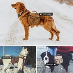 Sac à dos pour chien moyen, faire des affaires TOP 1 image 6 produit