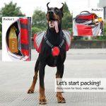 Sac à dos pour chien moyen, faire des affaires TOP 5 image 3 produit