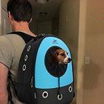 Sac à dos pour chien randonnée : comment acheter les meilleurs produits TOP 2 image 4 produit