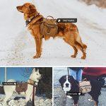 Sac à dos pour transporter chien ; comment trouver les meilleurs en france TOP 1 image 6 produit