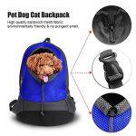 Sac à dos transport chien randonnée : faire des affaires TOP 7 image 1 produit