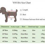 Sac de transport ventral chien - les meilleurs modèles TOP 10 image 4 produit