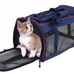 Sac ou caisse de transport pour chat, notre top 11 TOP 7 image 1 produit