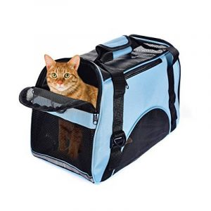 Sac transport chat avion - acheter les meilleurs produits TOP 4 image 0 produit
